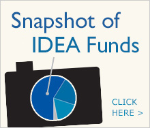 Snapshot of IDEA Funds