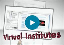 Virtual Institute