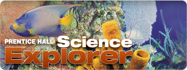 Prentice Hall Science Explorer ©2009
