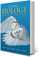Biology Neil Campbell 8Th Edition